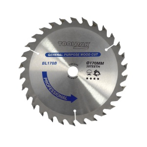 170mm x 16mm x 30T Professional TCT Saw Blade