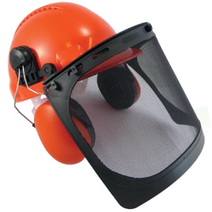 Forestry Helmet with Ear Defenders and Visor